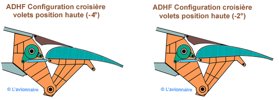 ADHF croisiere
